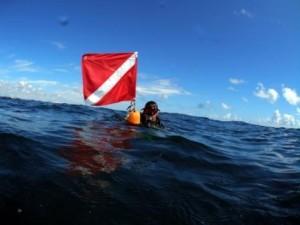 scuba-dive-flag1